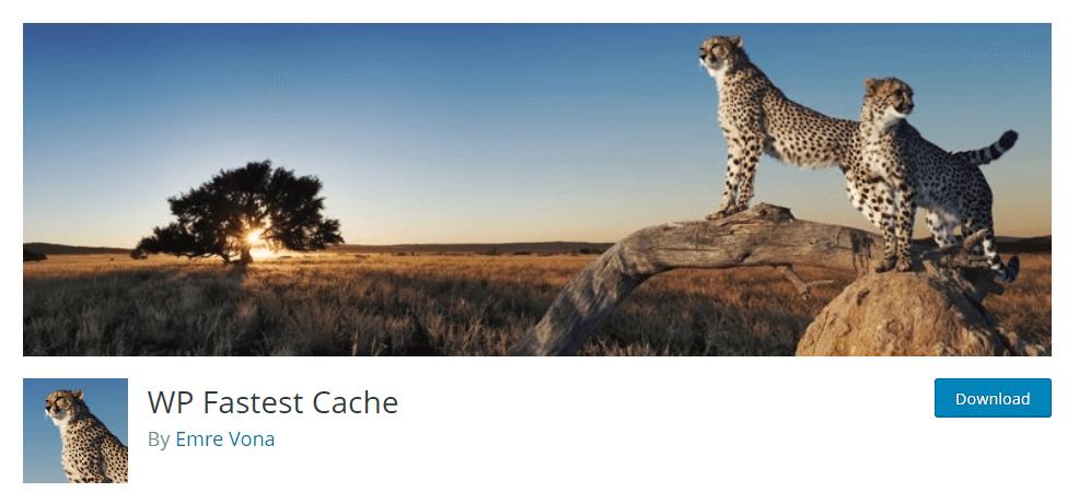WP Fastest Cache by Emre Vona